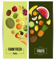 farm fresh fruit flyers set vector image