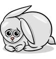baby rabbit bunny cartoon vector image