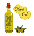 Olive oil bottle vector image