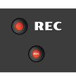 rec button vector image