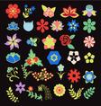 Symbols icon set Flower Set vector image