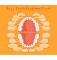 Teeth Infographic vector image