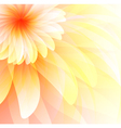 Floral abstract background eps 10 vector image