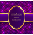 Shiny background with sparkles vector image