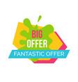 big and fantastic offer emblem vector image
