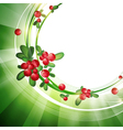 Green Frame With Cranberries vector image vector image