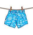 Boxer Shorts Hanging on the Line vector image vector image