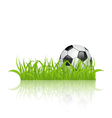 Soccer ball on grass isolated on white background vector image