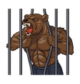 Angry bear in cage 3 vector image