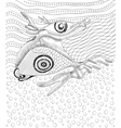 Surreal hand drawing whale and fish vector image