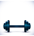dumbbell on white background vector image