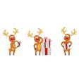 christmas deer set vector image vector image