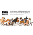 horizontal banner with dogs of various breeds and vector image