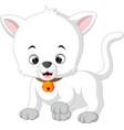 white cat cartoon vector image