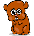 baby hamster cartoon vector image