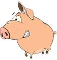 A cute pig farm animal cartoon vector image