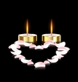 candles and heart vector image