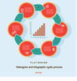 Flat design histogram and infographic cyclic vector image