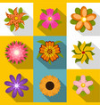 wild flowers icons set flat style vector image
