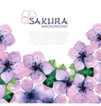 Watercolor elegant background with japanese sakura vector image