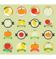 Set of various fresh fruit premium quality tag vector image