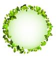 Fresh green leaves border EPS10 vector image
