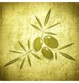 Olives Grunge Background vector image
