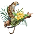 Watercolor leopard vector image