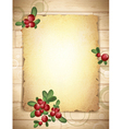 Burnt Paper With Cranberries vector image