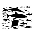 underwater world of fish vector image vector image