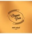 grain organic vintage design background vector image