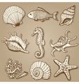Sea collection Original hand drawn vector image vector image