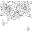 background with frame of dahlia vector image