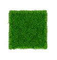 Green Grass Field Banner Football Place vector image