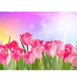 Beautiful spring flowers EPS 10 vector image