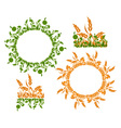 frames and patterns vector image