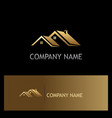 house roof gold company logo vector image