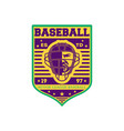 baseball minor league championship vintage label vector image