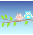 background with owls on brunches vector image