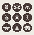 Silhouette Bugs vector image