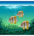 Ocean fish vector image