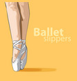 cute ballet slippers vector image