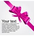 shiny pink satin ribbon vector image