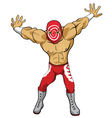 Wrestler vector image