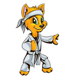 kitty karate vector image