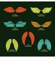 Wing set stylized wings vector image