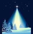 White Christmas forest vector image