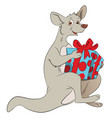 kangaroo holding a giftbox vector image