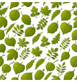 leaves of plants seamless vector image