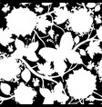 white and black floral pattern vector image